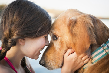 A young girl and a golden retriever dog, nose to nose.