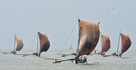 Traditional Sri Lankan fishing boats under sail