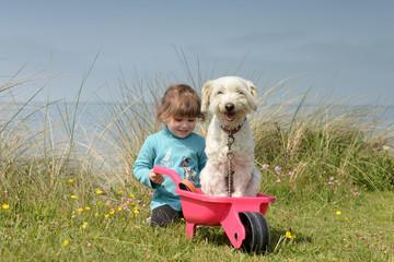 vacances avec le chien