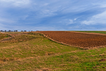 Agricultural Meadows and Ploughed/Plowed Field
