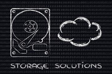storage options: hard drives or cloud storage