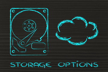 storage options: hard drives or cloud storage