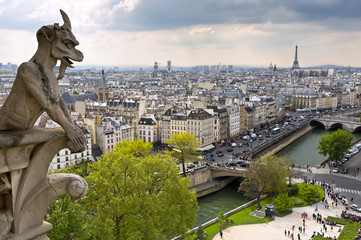 Notre Dame of Paris: Chimera overlooking the city