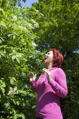Allergy to pollen: mid aged woman sneezing among elder blossoms
