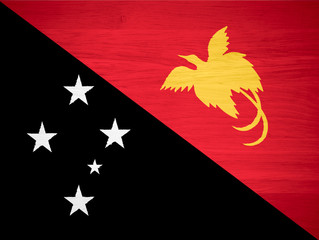 Papua New Guinea flag on wood texture