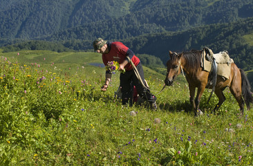 white man picking flowers on mountain meadow with horse
