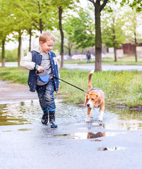 Boy walk with pet through the puddle after spring rain