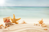 Fototapety Summer beach with strafish and shells