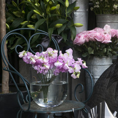 Sweet pea, Lathyrus odoratus, flowers in crystal vase
