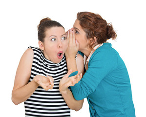 Bad rumors. Portrait of two young women gossiping