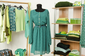 Dressing closet with green clothes arranged on hangers and shelf
