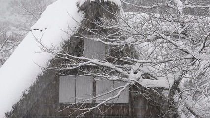 Snow falling on the house,in Toyama,Japan