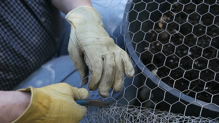 man cutting chicken wire