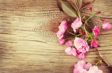 Spring Cherry Blossom on Old Wooden Background. Sakura