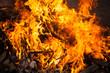 blaze fire flame