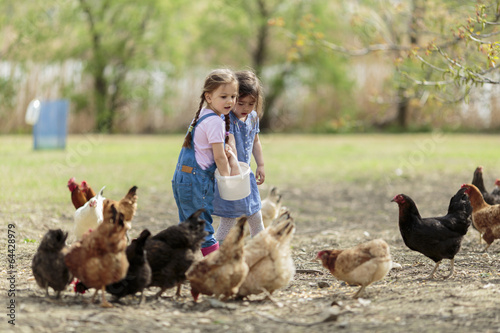Two little girl feeding chickens - 64428979