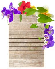 lianes, orchidées, hibiscus et plumeria sur fond bois