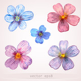 Fototapety Watercolor flowers for your design.