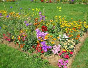 massif de fleurs dans un jardin public au printemps
