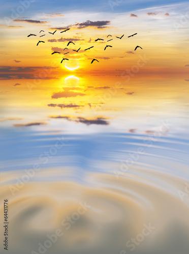 Fotobehang Een Hoekje om te Dromen ondas en el mar en calma