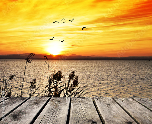 Fototapeta el mar cuando sale el sol