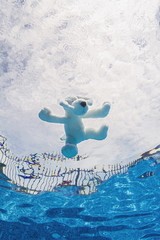 Plush toy in pool