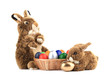 Two fluffy foxy rabbit in basket with Easter eggs.