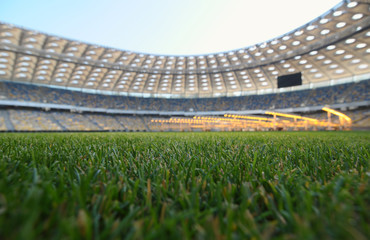 grass on a stadium