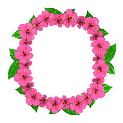 Pink Hibiscuses Frame