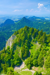 Summer landscape. The Pieniny Mountains nature reserve.