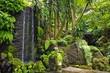 Leinwanddruck Bild - Monte hill with exotic garden, Madeira - Funchal, Portugal