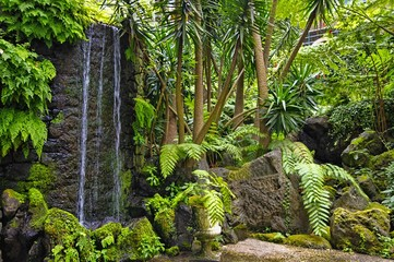 Monte hill with exotic garden, Madeira - Funchal, Portugal