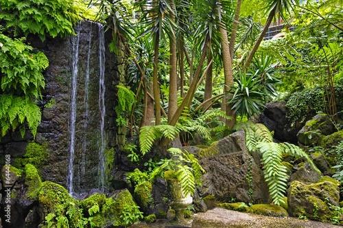 Leinwanddruck Bild Monte hill with exotic garden, Madeira - Funchal, Portugal