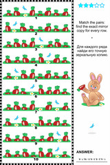 Visual puzzle: find the mirror copy for every row of carrots