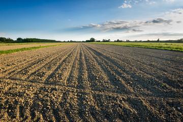campo terra pianura 2874