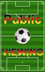 Fußballfeld hochkant Public Viewing