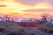 Spring river sunrise sunset