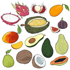 Vector Set of Cartoon Exotic Fruits