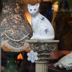 Portobello Road Market . London.Cat