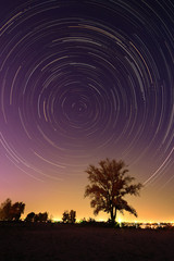Tree background at night with startrail