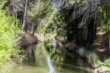 Paseo canal