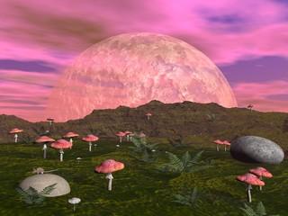 Mushroom fantasy landscape - 3D render