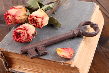 Beautiful composition with old key and old book