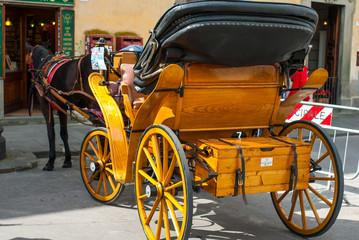 Carrozza tirata da cavallo, Pisa