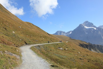 mountain path to alpine lake Bachalpsee , Switzerland