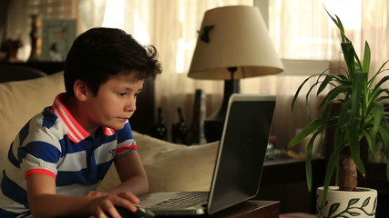 little child doing homework on the computer at home
