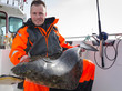 Man with huge halibut fishing trophy