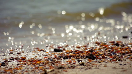 Waves and seashells in the sand