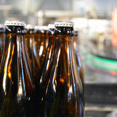 Fliessband mit Bierflaschen in Brauerei // beer bottles