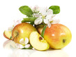 Apfel mit Blätter und Blüten